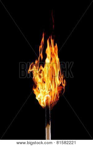Burning matchstick on black