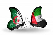 picture of algeria  - Two butterflies with flags on wings as symbol of relations Algeria and United Arab Emirates - JPG