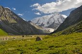 picture of shan  - Grassy rocks lying in the valley under snow - JPG