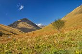 foto of shan  - Picturesque green hills in Ala Archa national park in Tian Shan mountain range in Kyrgyzstan - JPG