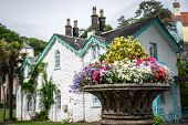 stock photo of planters  - Planter of flowers in front of a house in Portmeirion - JPG