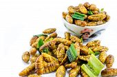 foto of silk worm  - Fried silk worms with green pandan leaves - JPG