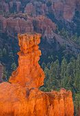 picture of hoodoo  - Bryce Canyon National Park Utah Southwest USA beautiful nature landscape red rock formation Hoodoos on a summer morning - JPG
