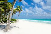 picture of playa del carmen  - Beautiful beach in Mexico Tulum with ancient maya ruins - JPG