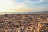 pic of azov  - Shelly beach with views of the sea and sky at sunset travel background - JPG