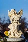 image of blue angels  - Tomb sculpture of an angel at the blue sky - JPG