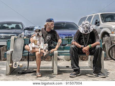 Venice Beahc, Los Angeles - CIRCA JUNE: Two friends open dog show,  circa June 2014, Los Angeles