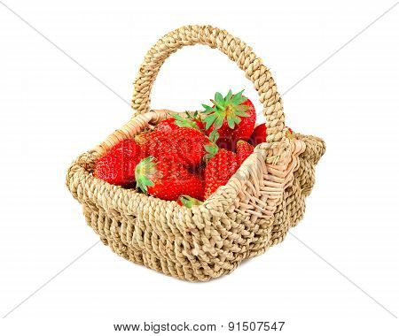 strawberries, strawberry season