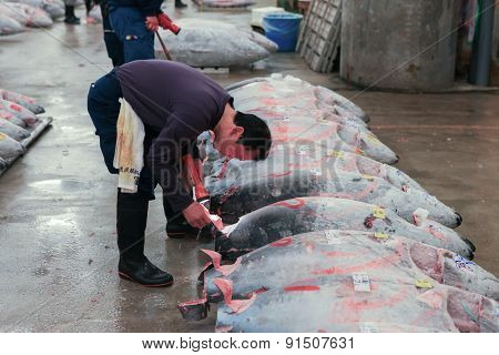 Tsukiji market - Tuna auction