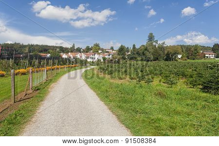Countryside In Switzerland