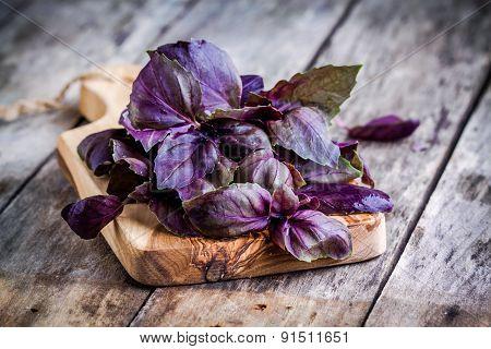 Beam Of Purple Basil On Cutting Board