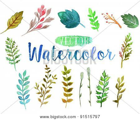 Vector watercolor hand drawn colorful branches and leaves. The art paint on white background