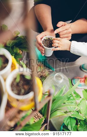 Woman hands showing to girl young seedlings in pot