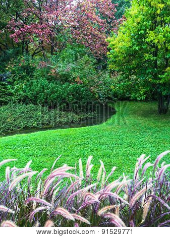 Beautiful Colorful Garden With Green Lawn