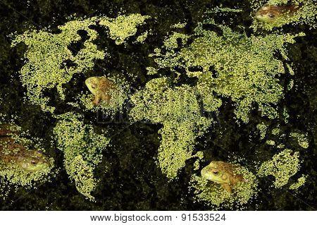 Global Habitat Concept