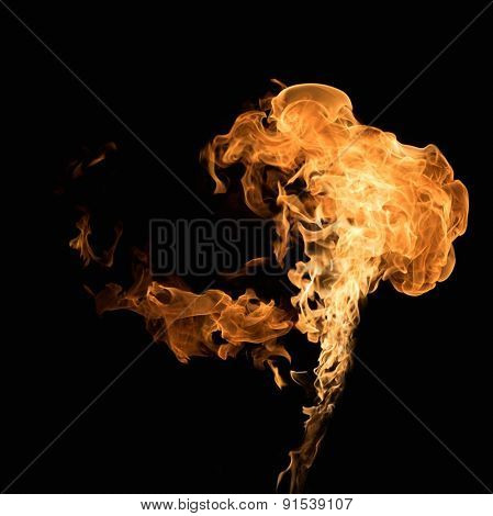 Burning flame on black background