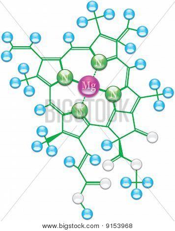 Chlorophyll Formula