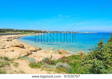 Capo Testa Shoreline