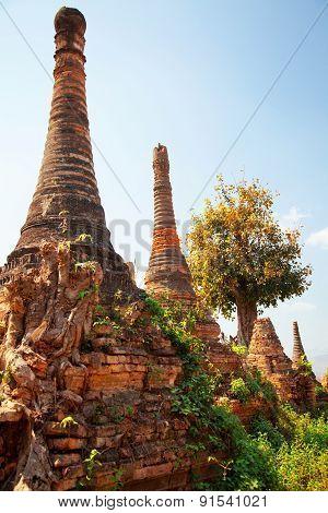 Sagar, Lake Inle, Myanmar