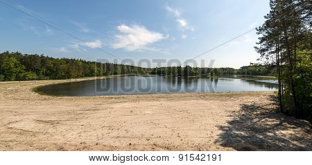 Small Lake In The Forest