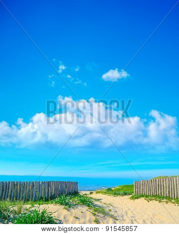 Wooden Palisades In Platamona Beach