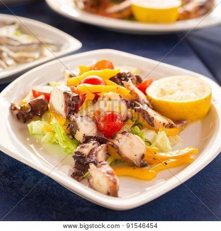 Italian Cuisine. Octopus Salad