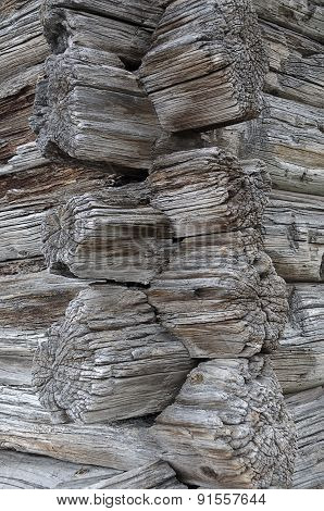 Old Logs Joint Texture