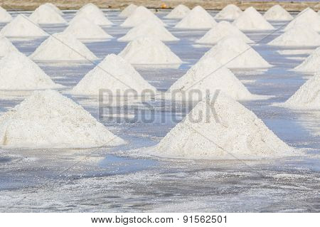 Heap Of Sea Salt In Salt Farm Ready For Harvest.
