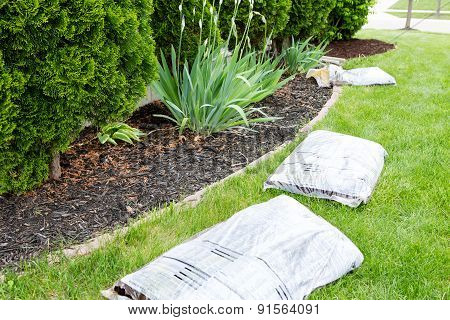 Garden Work In Spring Mulching The Plants