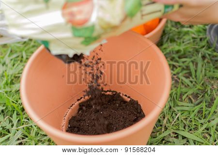 Plant Pot Compost Gardening Action