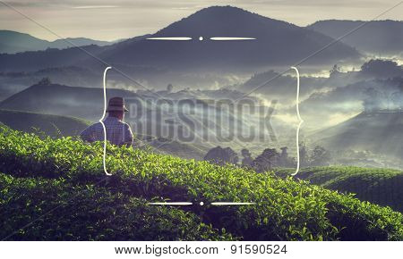 Farmer at tea plantation in Malaysia.