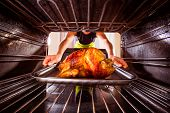 picture of oven  - Housewife prepares roast chicken in the oven - JPG
