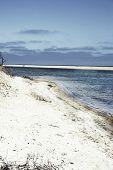 stock photo of martha  - Beach on island of Chappaquiddick in Massachusetts - JPG