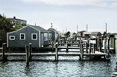 pic of martha  - Beautiful fishing village of Menemsha on Martha - JPG