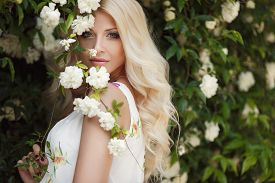 pic of wind-rose  - Gorgeous blond with long curly hair and blue eyes - JPG