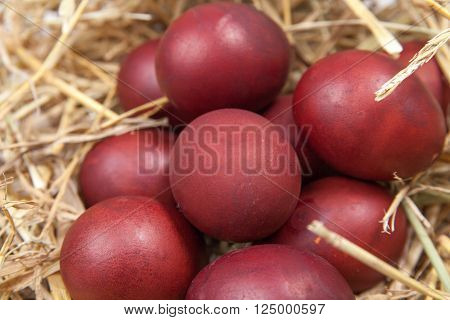 Colourful Easter eggs in the nest on the table. Red Easter eggs in a straw nest. Happy easter!!!