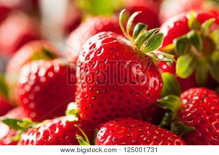 Raw Red Organic Strawberries Ready to Eat