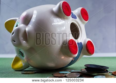 Opened piggy bank and coins - business concept on white background
