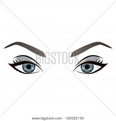 Realistic cartoon vector female grey eyes and eyebrows and fashion make up. Grey eyes and brows design element body parts isolated on white background. Eyes close up