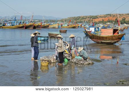MUI NE, VIETNAM - DECEMBER 25, 2015: Sorting and accounting of catch of vietnamese women in the Fishing harbour of Mui Ne