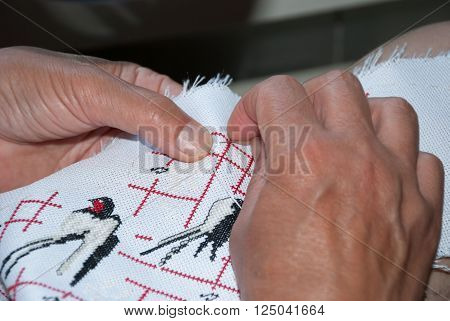 Woman's hands embroider on canvas swallow, handmade, Ukraine