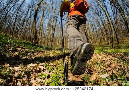 Hiking - Hiker walking in forest with poles. Close up of hiker shoes boots and hiking sticks poles.