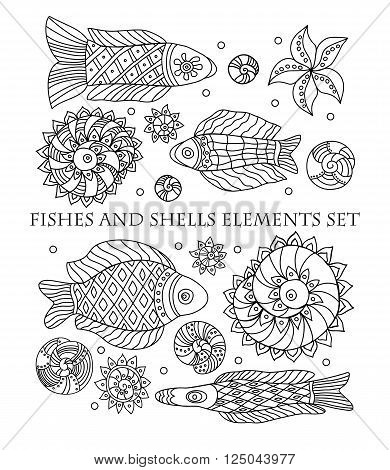 Fishes shells sea anemones and starfish elements set on white background. Elements for your design. Vector illustration