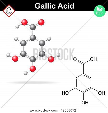Gallic acid molecule gallate structural chemical formula and model 2d & 3d vector isolated on white background eps 8