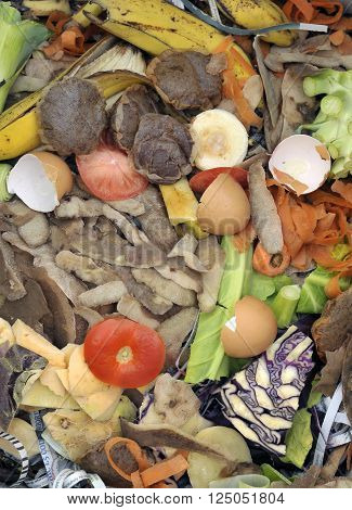 Mixture of composting materials comprising fruit and vegetable kitchen food waste with shredded newspaper.