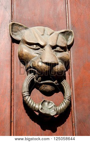 Door knocker lion shaped in Cartagena de Indias