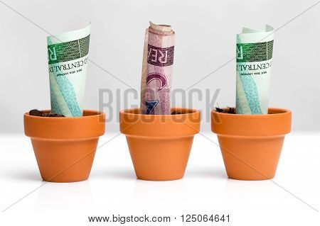 brazilian bank notes real concept growth white background