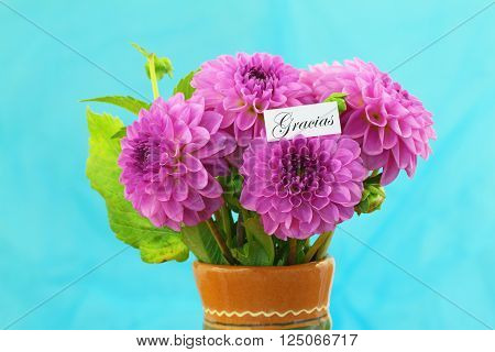 Gracias (which means thank you in Spanish) card with pink dahlia flowers on blue background