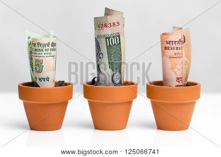 brazilian bank notes real, concept growth, white background