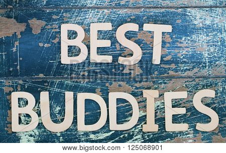 Best buddies written with wooden letters on rustic surface